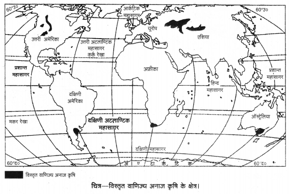 UP Board Solutions for Class 12 Geography Chapter 5 Primary Activities 7