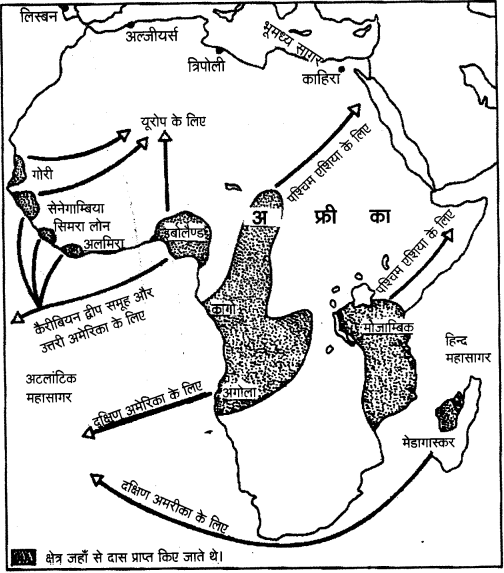 UP Board Solutions for Class 11 History Chapter 8 Confrontation of Cultures image 1